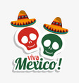 viva mexico skulls hat design vector image