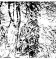 natural texture vector image