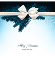Christmas background with fir branches and baw vector image