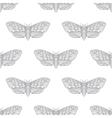 Hand drawn hawk moth seamless pattern vector image