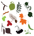 FOREST DETAILS vector image vector image