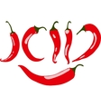 Red chili pepper  isolated vector image