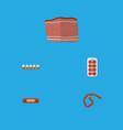 flat icon food set of kielbasa beef bratwurst vector image