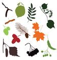 FOREST DETAILS vector image