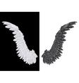 White and Black Wing vector image vector image