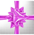 3d bow ribbon beautiful bright ribbon vector image
