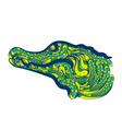 caiman brazil vector image