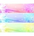 flower banner set vector image