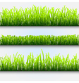 green grass for design vector image