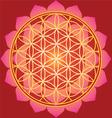 Sacred Geometry flower of life mandala vector image
