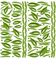 Green peas seamless pattern vegetable background vector image