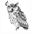 owl hand-drawing on a white background vector image