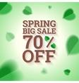 Spring big sale banner on green background vector image