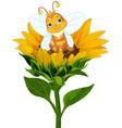 queen bee on sunflower vector image vector image