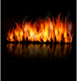 Fire on black background vector image vector image