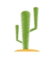 Isolated cactus plant design vector image