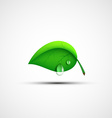 Green leaf logo with a drop of water vector image