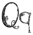letter Q q vector image