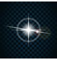 sparkle light star 5 vector image