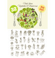 big set of hand drawn vegetables vector image vector image