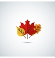 autumn leaves icon background vector image