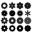 silhouettes of flowers vector image