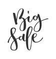 Big sale hand written inscription vector image