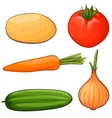 cartoon vegetables vector image