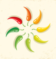 Chilli on paper vector image