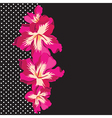 Floral pattern with beautiful flowers hand-drawing vector image vector image