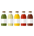 juice in a glass bottle vector image