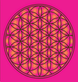 Sacred Geometry flower of life symbol vector image vector image