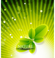 evergreen nature vector image vector image