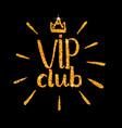 vip club glitter logo lettering vector image
