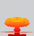 Mushroom cloud vector image vector image