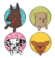 Cute dogs icon set vector image