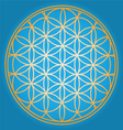 Sacred Geometry flower of life vector image