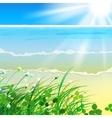 01 paradise Sea grass vector image