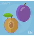 Plum icon vector image