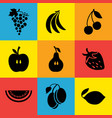 various fruits on a color background vector image