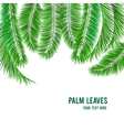 Tropical palm tree background banner vector image vector image