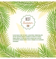 Frame of palm branches best summer background vector image