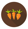Carrots Vegetables Circle Icon with long Shadow vector image