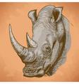 engraving rhino retro vector image