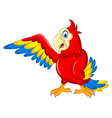 Macaw wing bird with blank sign vector image