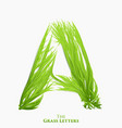 letter a of juicy grass alphabet green a vector image
