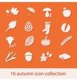 autumn icon collection vector image