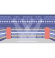 Background of boxing ring vector image vector image