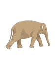 isolated brown elephant animal character walking vector image