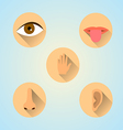 senses icons vector image